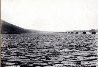 Logs-on-susquehanna
