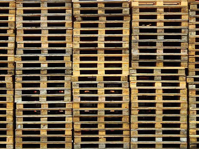 Remmey, The Pallet Company uses PA trees to make shipping possible - Image
